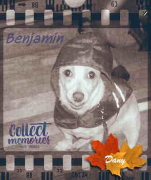 Benjamin !!!