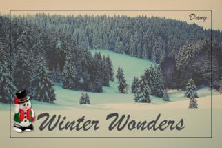 Winter Wonders !!!