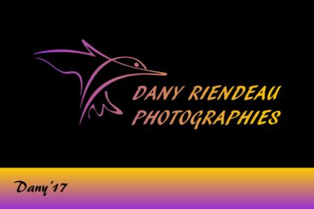 Dany Riendeau Photographies !!!